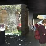 Visitors Center Eklandskapet, interior/exhibition